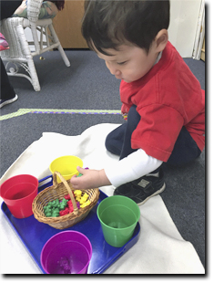 boy separating color-codded items